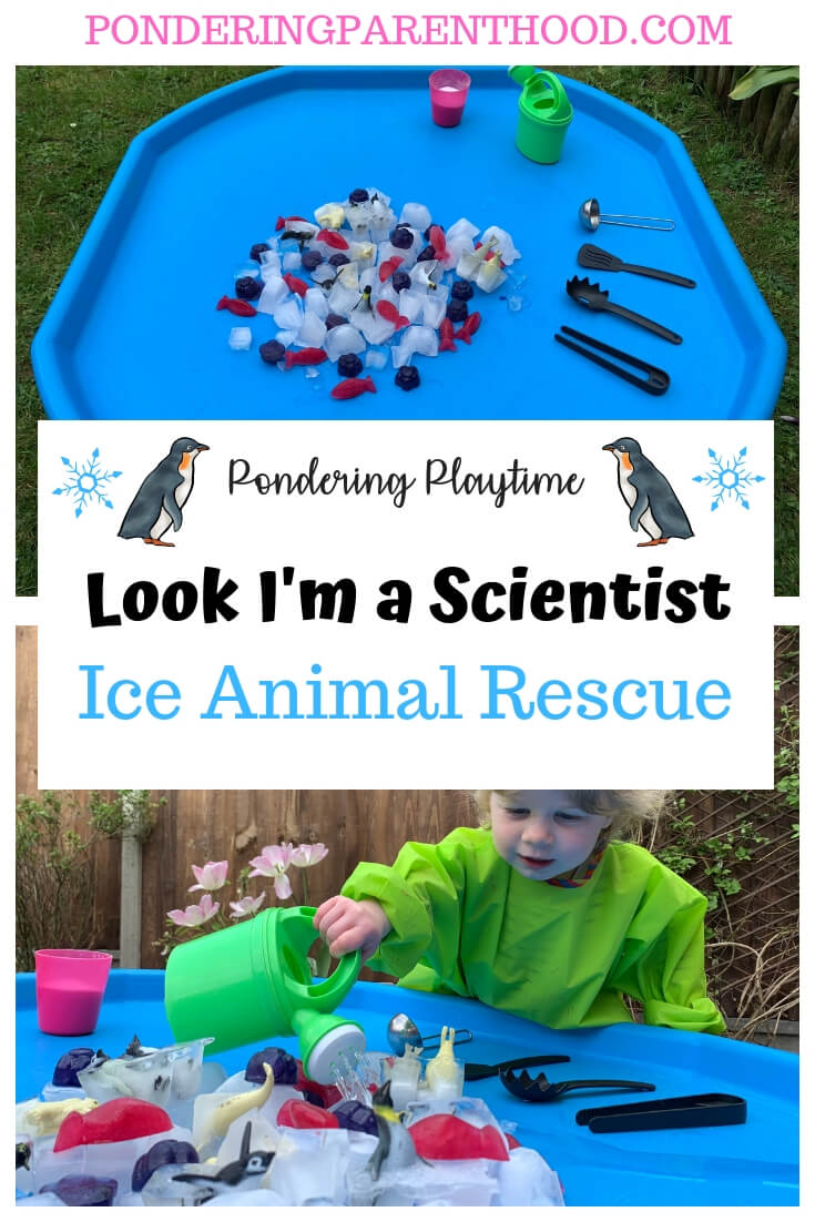 Looking for a fun EYFS ice investigation tuff spot? Check out this easy ice animal rescue activity, using just a few resources.
