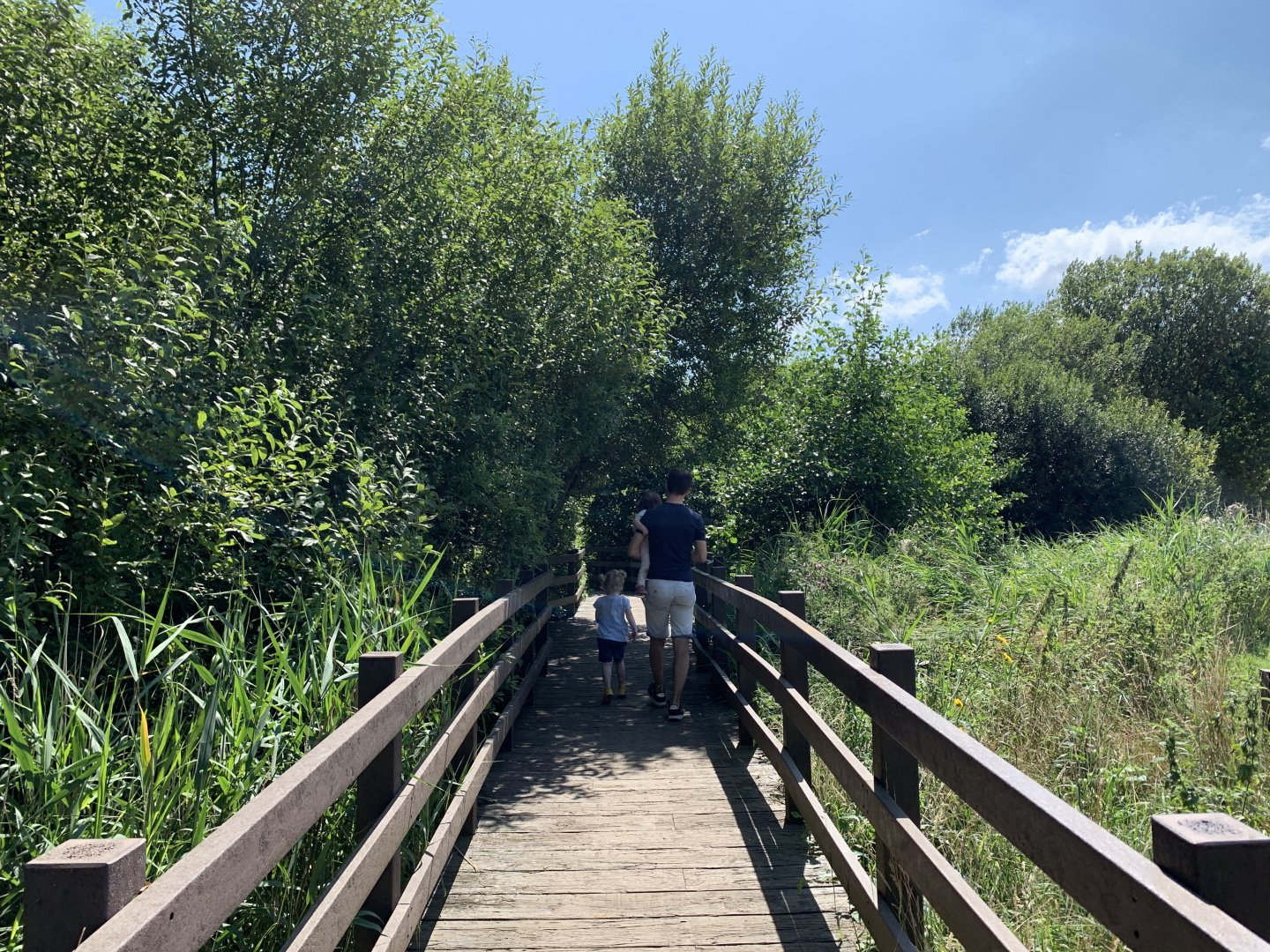 Matthew, M and B walk down the boardwalk to the Wader's lake at Africa Alive.